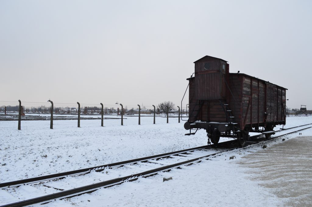trein birkenau